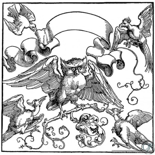 Albrecht-Durer-An-Owl-Fights-with-Other-Birds